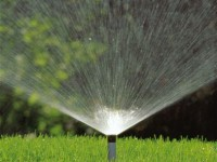 Are You Using a Watering System for your Garden?