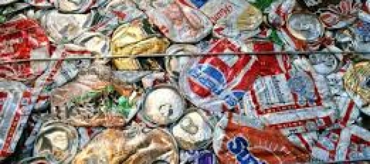 Recycling Our Way to a More Sustainable Future
