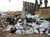 8 Easy Ways to Reduce Landfill Waste