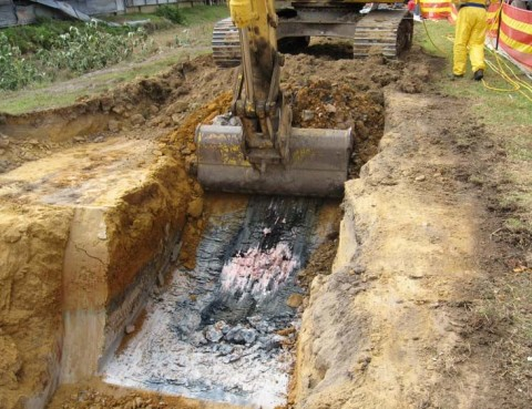 Technologies for Cleaning Up Contaminated Sites