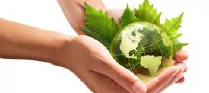 Interesting Ways to Save Energy and Conserve the Environment