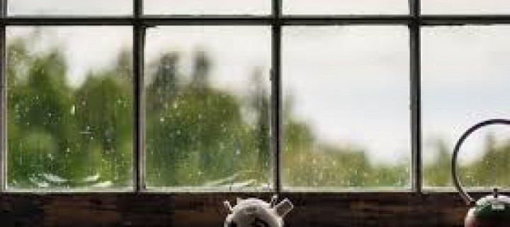 Replace Your Windows and Save on Energy