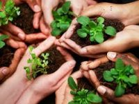 The industries that are becoming more eco-friendly